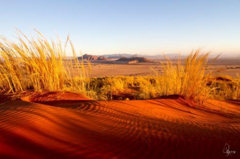Stimulation Secteur CENTRE : «A l'aube d'un autre Namib»