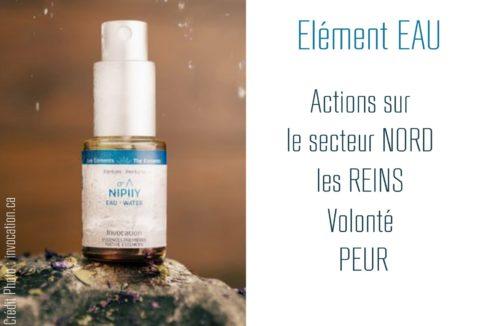 Encens liquide EAU «NIPIIY»- 15ml