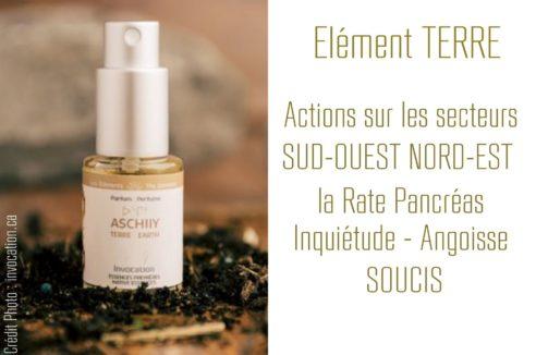 Encens liquide TERRE «ASCHIIY» – 15ml