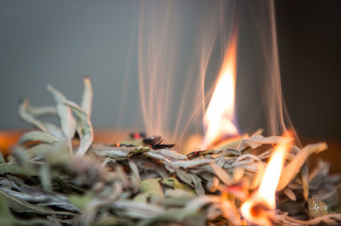 Encens Traditionnel Sauge Blanche (Sachet)