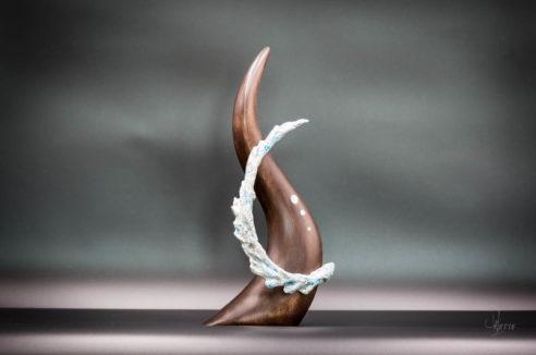 NORD – EAU Stimule Carrière – Chemin de vie