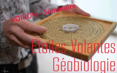 25 Févier 2019 – Feng Shui des Etoiles Volantes et Géobiologie ©REY