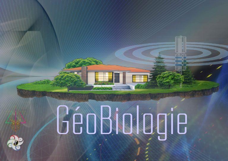 17 Octobre 2020 – Décrypter la Géobiologie de mon habitat – CHASSELAY (69)
