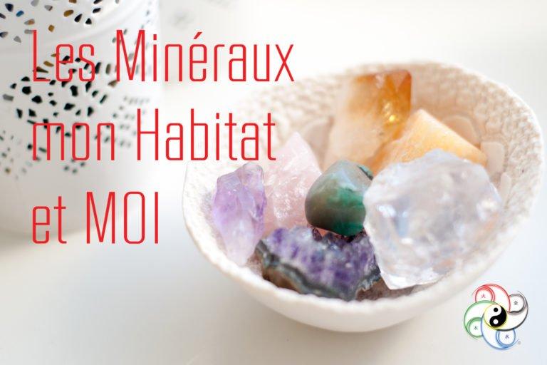 19 Juin 2020 Pouvoir des Minéraux dans mon Habitat – GRENOBLE (38)
