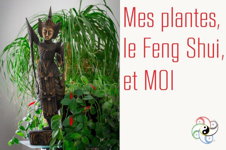 Mes plantes, le Feng Shui et MOI