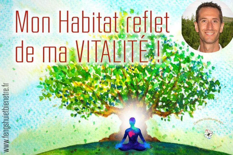 11/02 En LIGNE – Mon Habitat reflet de ma VITALITÉ