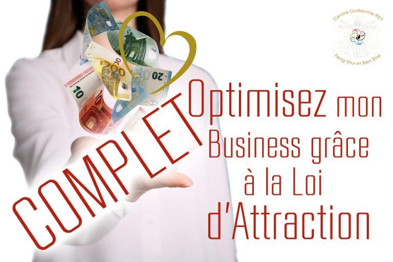 Read more about the article 18-19-20 juin 2021 – Optimisez mon Business grâce à la Loi d'Attraction COMPLET