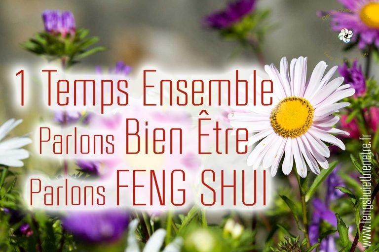 Read more about the article 12 juin 2021 – Découvrez, Échangez autour du FENG SHUI – CHASSELAY (69)