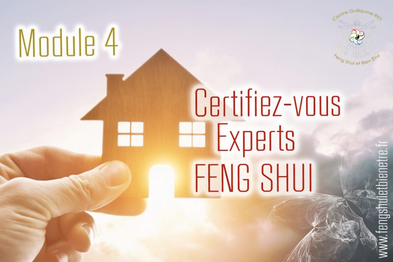 Read more about the article 18 + 19 Nov 21 – Certifiez-vous Expert FENG SHUI – CHASSELAY (69)